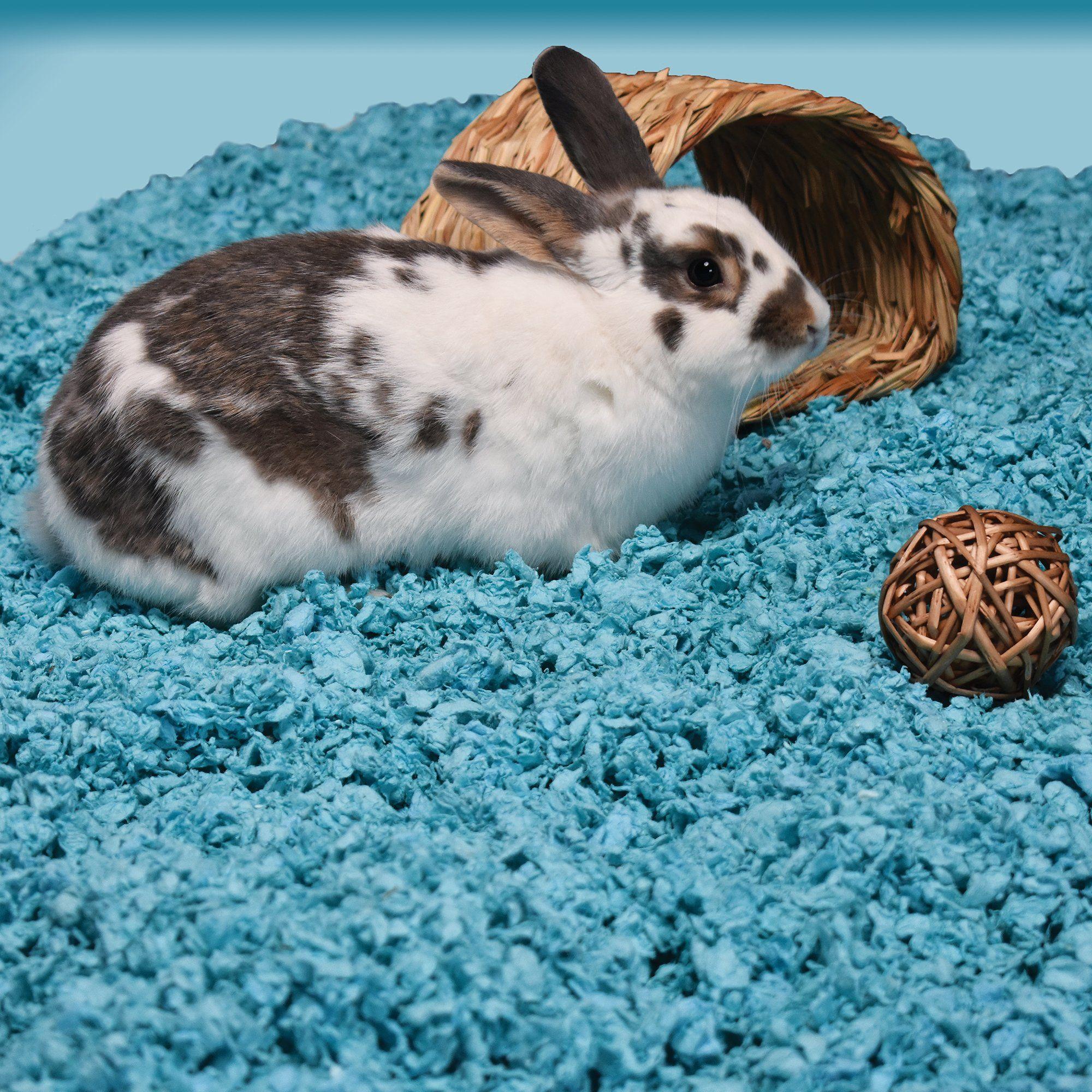 Carefresh Blue Small Pet Bedding, 50 Liter Pet beds
