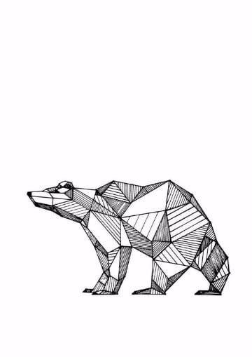 dibujos de osos polares a lapiz