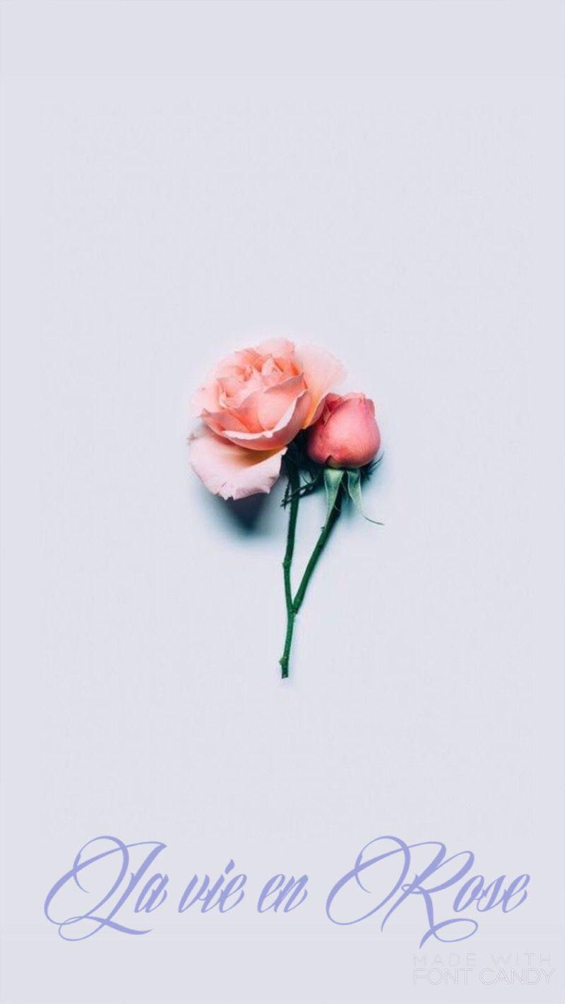 """""""La vie en Rose"""""""