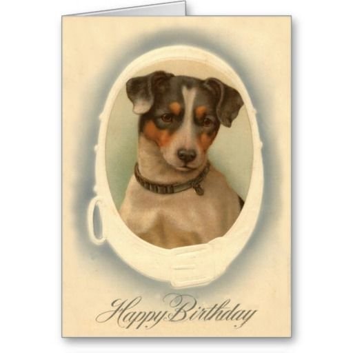 Jack Russell Terrier Collar Birthday Card Zazzle Com Jack