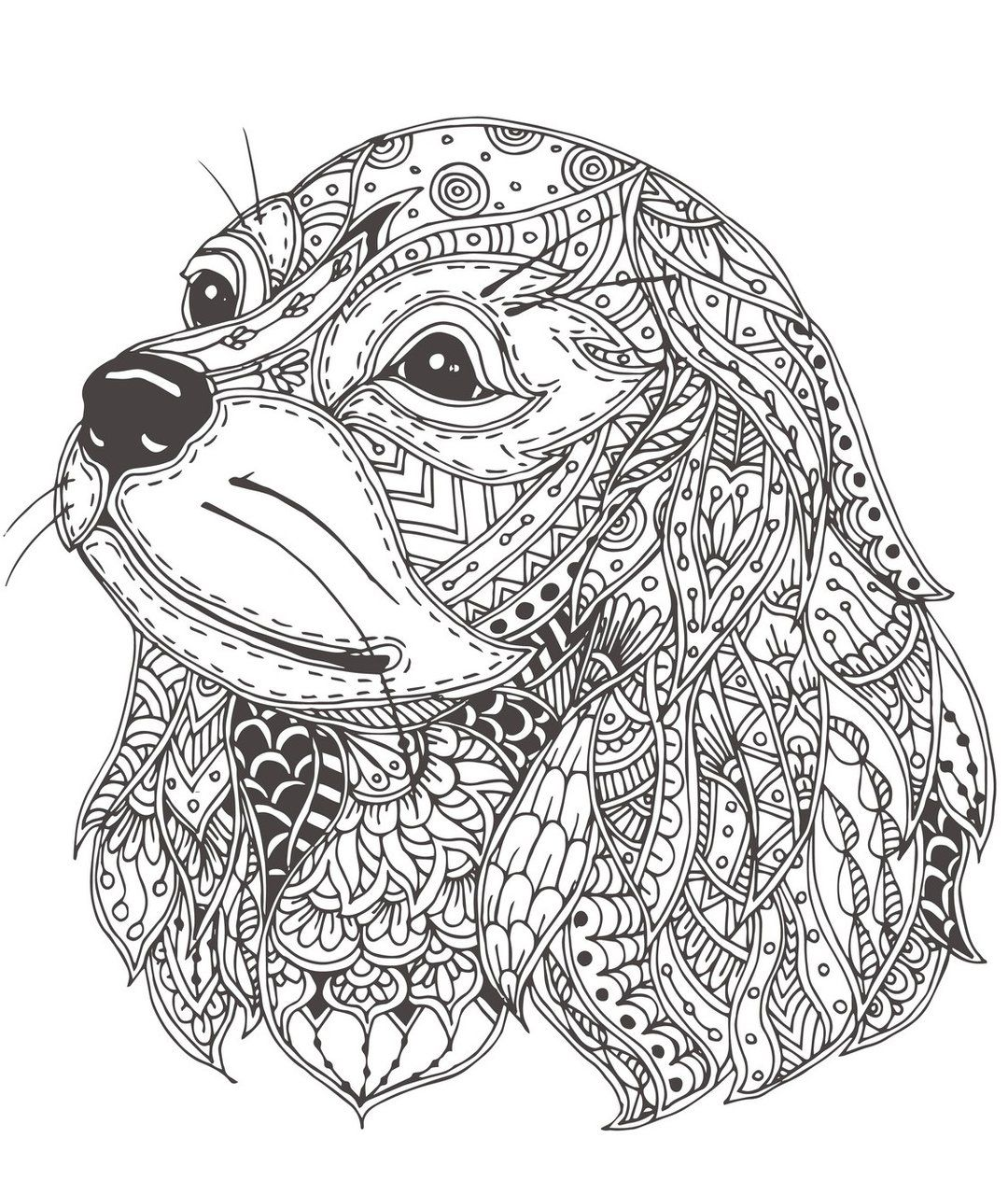 Mandala Dogs Coloring Book Relaxing Cute Ornamental Dog Breeds Rachel Mintz Coloring Books Dog Coloring Book Dog Drawing Dog Images [ 1279 x 1080 Pixel ]