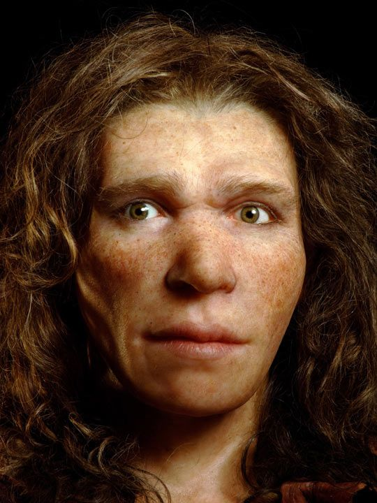 A lovely lively reconstruction of a neanderthal woman's face ...