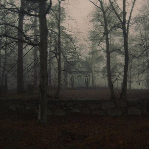 This Tiny House Creepy Woods Creepy Houses Abandoned