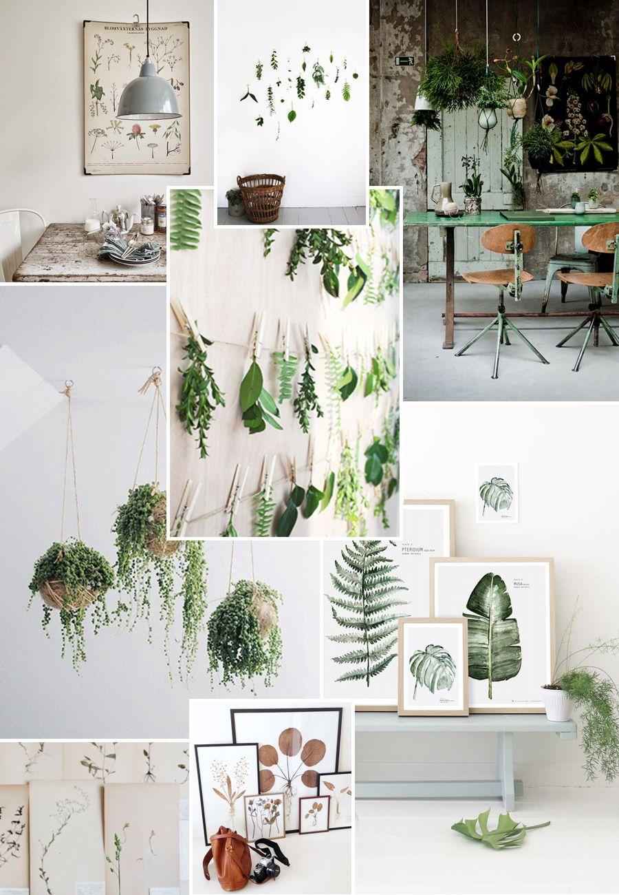 botanisch interieur | clinic/ Ontwerpen & Styling | Pinterest