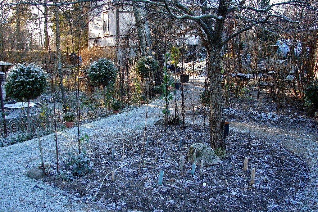 Kuvahaun tulos haulle pihatie puutarha