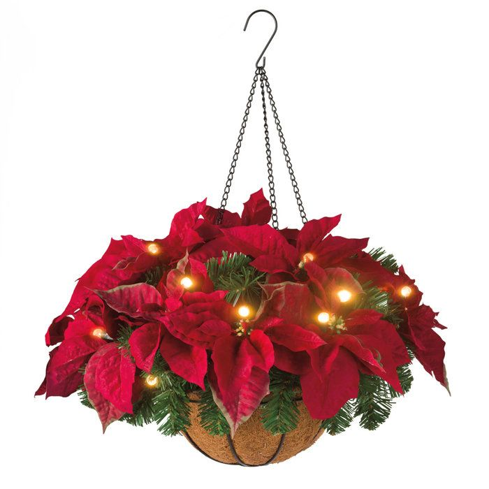 Christmas Hanging Baskets With Lights.Cordless Led Poinsettia Hanging Basket Decorate In A Whole