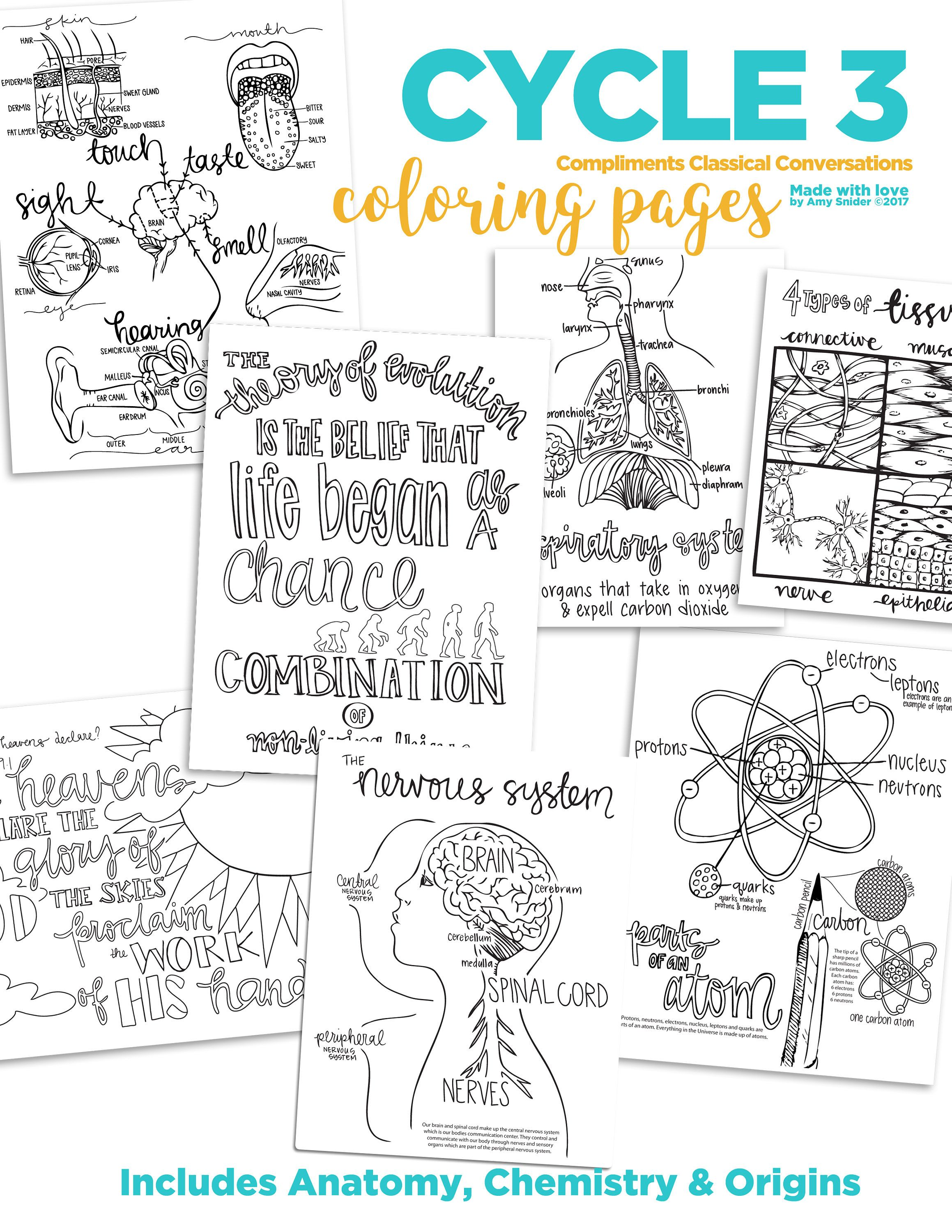 4th Not 5th Edition Cycle 3 Science Coloring Pages