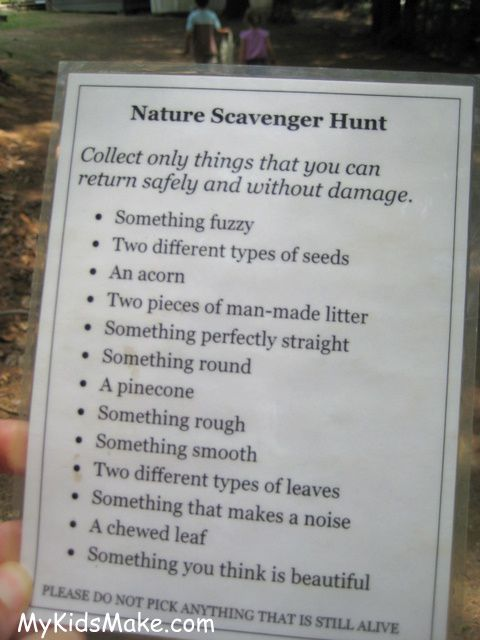 A walk through the woods can take on a fun new twist when you turn it a scavenger hunt.