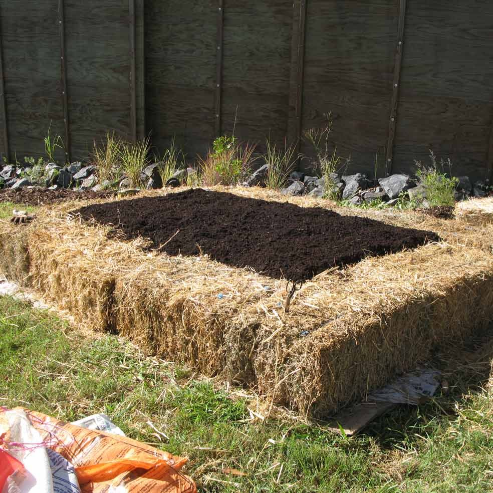 No dig vegetable gardens with raised garden beds - The No Dig Vegetable Garden And At The End Of The Season You Can Dismantle The Raised Bed And Use The Hay Bales For Halloween Decorations