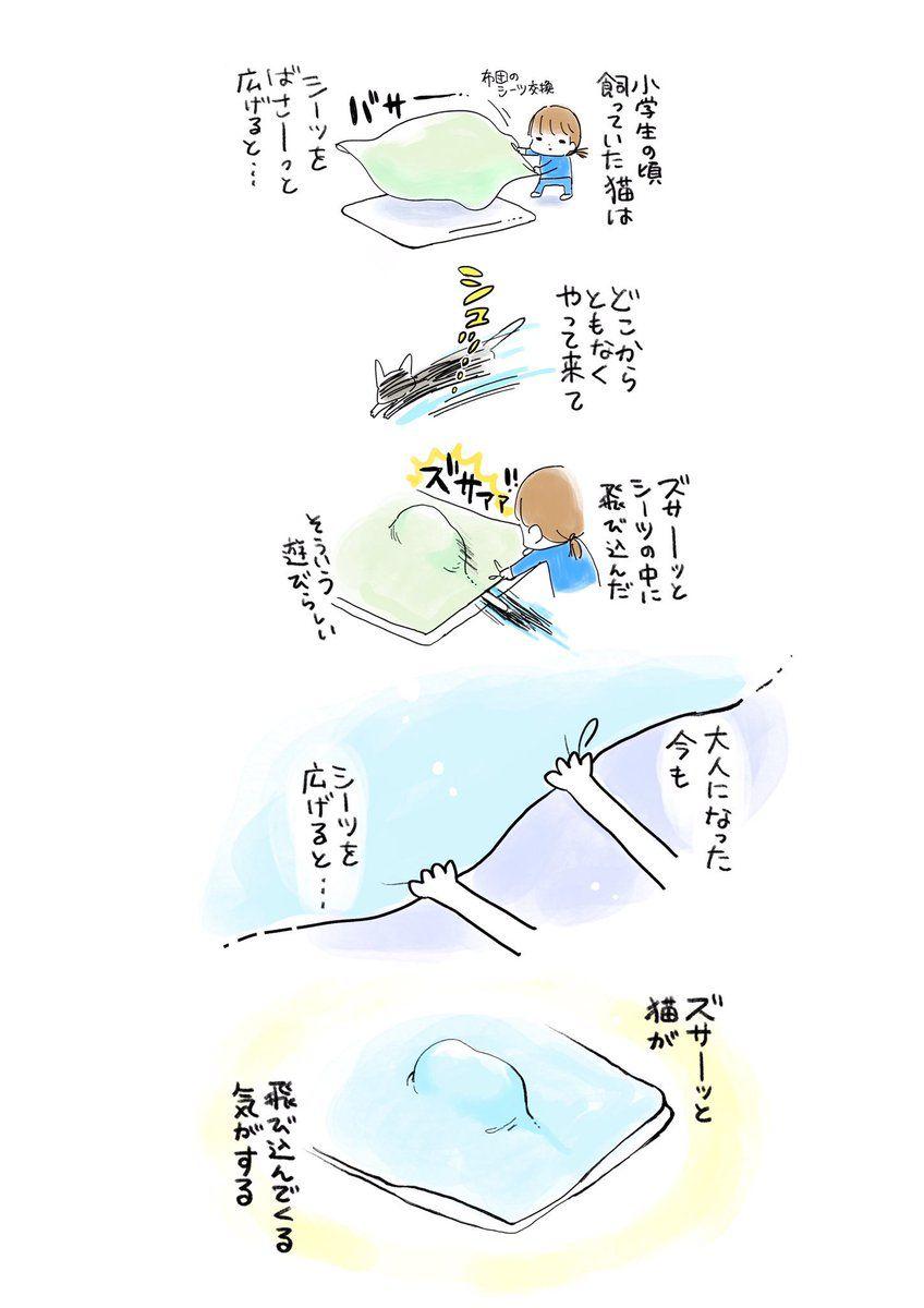 ことり野デス子 Deathcotori さんの漫画 92作目 ツイコミ 仮