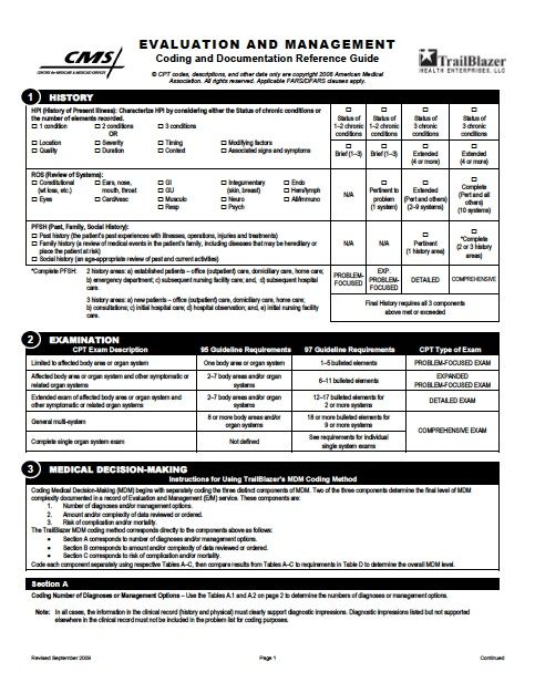 Download the official Trailblazer E&M Worksheet as a PDF | Medical
