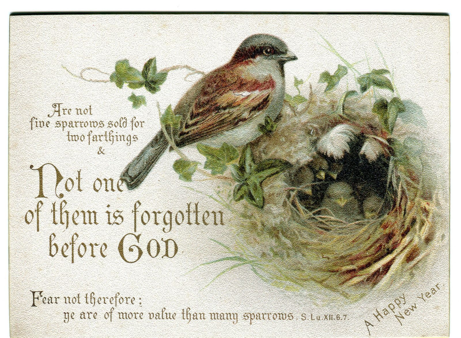 Pin on ReLiGiOuS PoSTCArDS