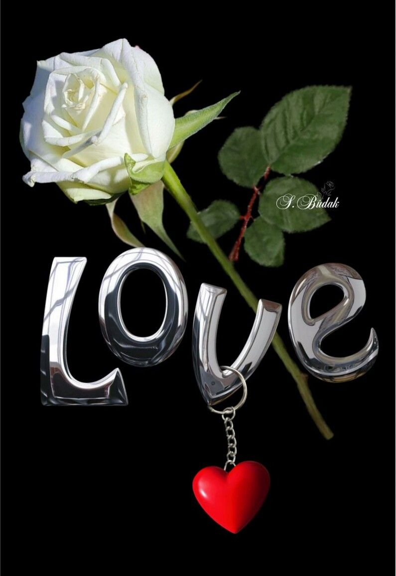 Pin By Manoj On Name Art Hearts And Roses Love Images Book Flowers