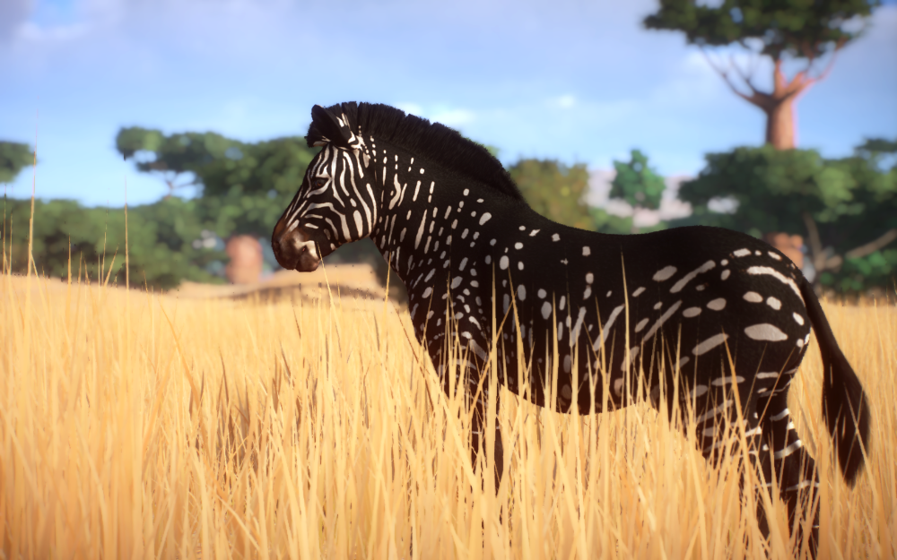 Melanistic Zebra At Planet Zoo Nexus Mods And Community Melanistic Animals Melanistic Zoo Animals Photography