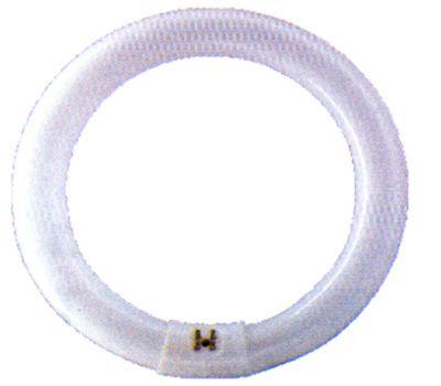 Casquillo G10q Fluorescente Circular 22w 148mm De Diametro Casquillo G10q Circular Luz Dia Circulo Luces