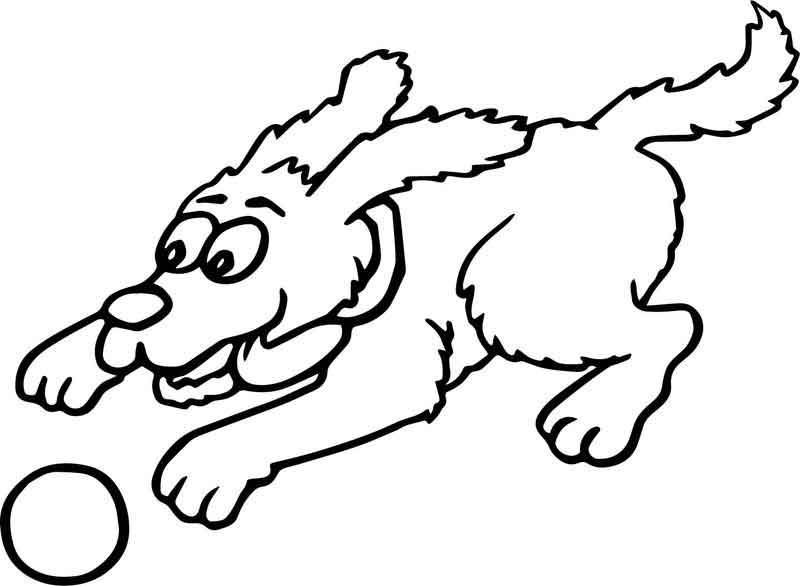 Fast Dog Catch Ball Cartoon Funny Coloring Page Funny Cartoons Coloring Pages Cartoon