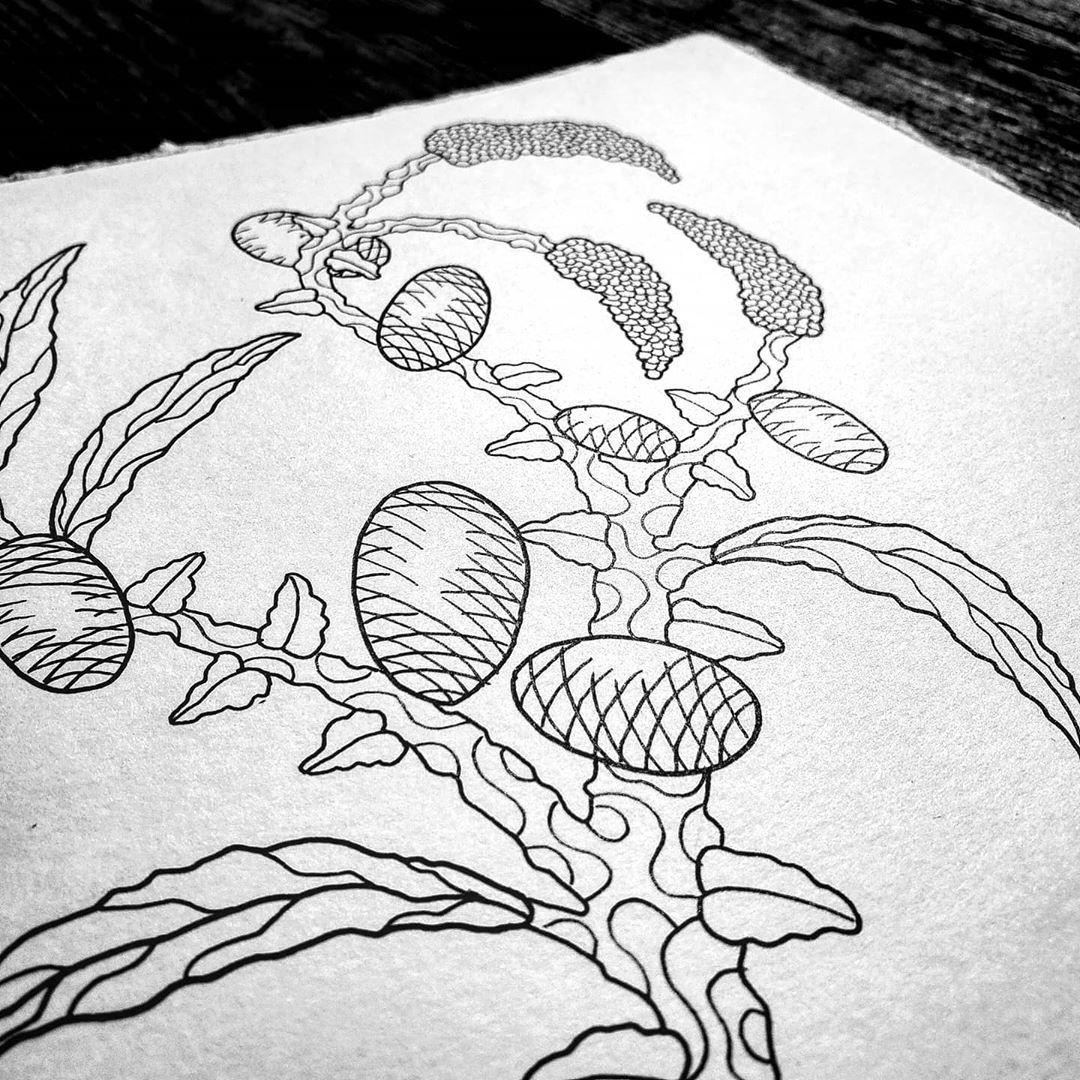 Ink, plants & sunshine 🌱☀️ #art #artofvisuals #arte_of_nature #artistsoninstagram #artist #artwork #artofdrawingg #ink #inkonpaper  #inkdrawing #inkstagram #staedtler #blackwork #tattooart #inkwork #inkstagram #sketch #sketchbook #illustration #penandink #worldofpencils #worldofartists #plantsofinstagram #nature #nawden #art_spotlight #arts_help #drawing #detailersofinstagram