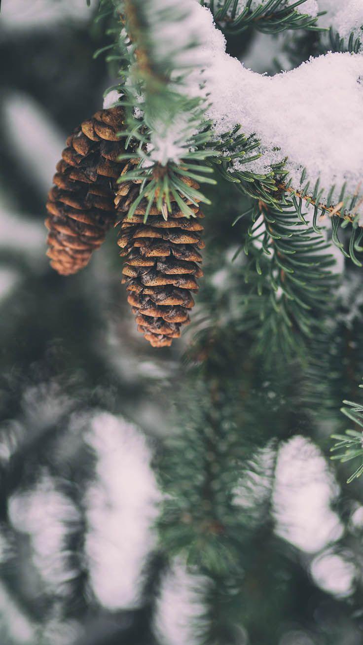 10 x Winter Wonderland iPhone Xs Wallpapers | Preppy Wallpapers #winterwallpaper
