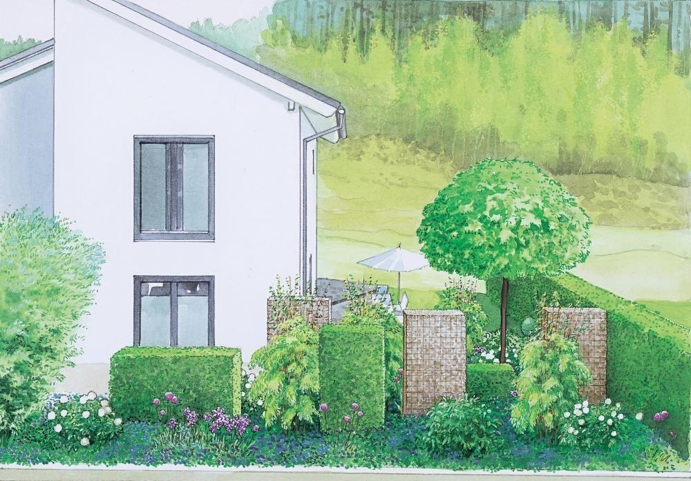 1 Garten, 2 Ideen: Attraktiver Vorgarten mit Sichtschutz