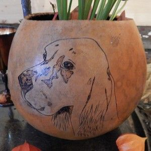 Gourd with Vintage Hunting Dog Portraits images