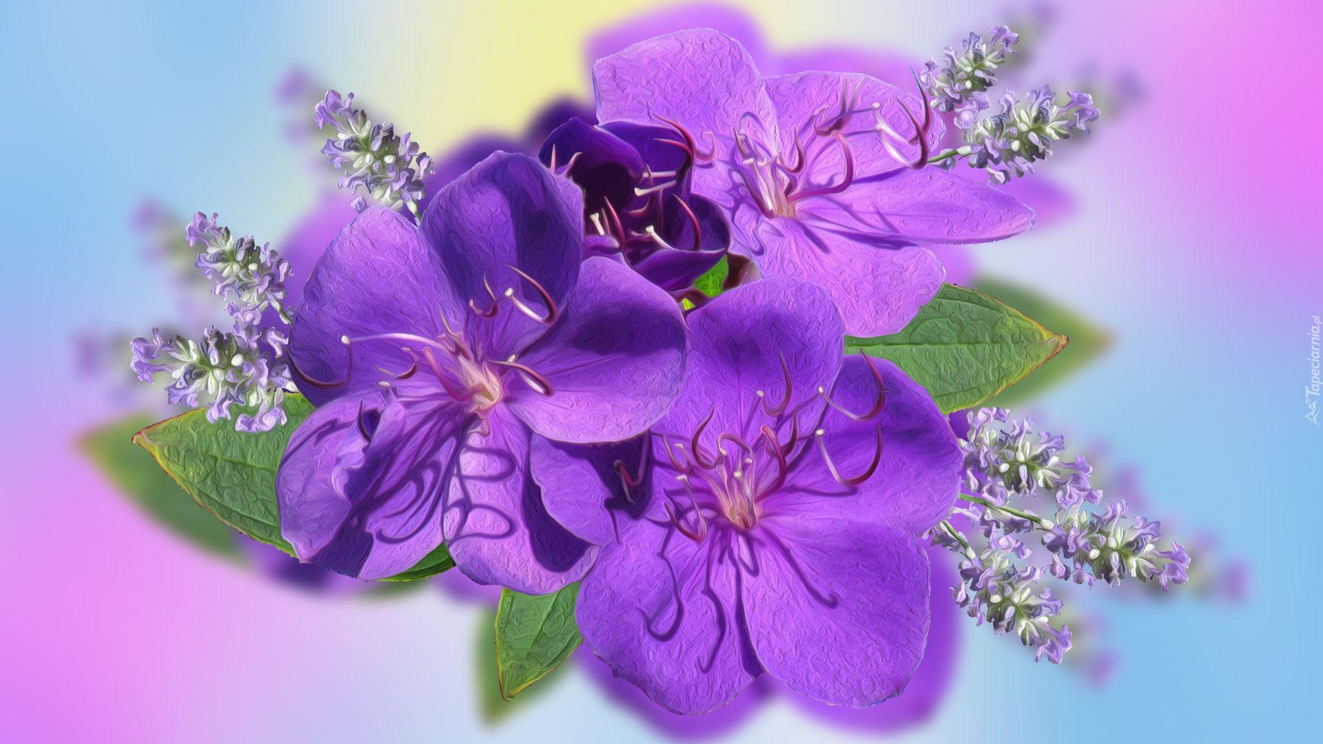 Trzy Fioletowe Kwiaty Plants