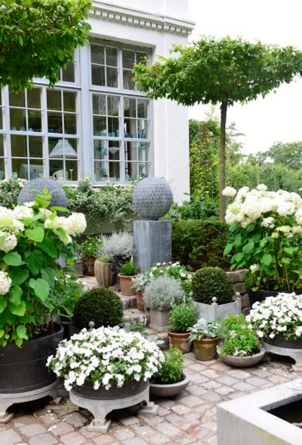Most Exquisite Gardens and Landscaping Ever! Claus Dalby green white exquisite garden with gorgeous potted hydrangeas and other container plantsClaus Dalby green white exquisite garden with gorgeous potted hydrangeas and other container plants