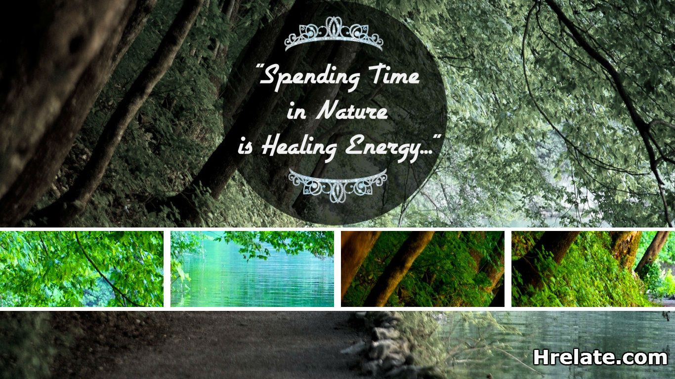 """Quote of The Day  """"Spending Time in Nature is Healing Energy""""  #HealthQuote #Fitness"""