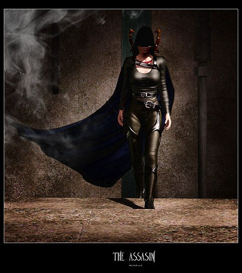The Assassin ~ Shane Gallagher