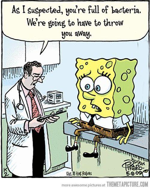 Image result for spongebob full of bacteria