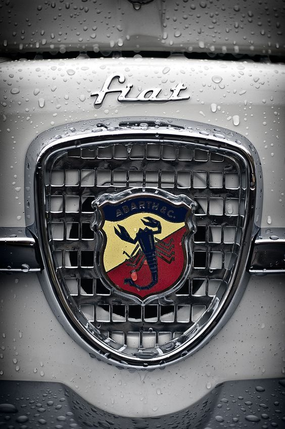 Fiat  Abarth Emblems Automobile Name Plates Hood Ornaments - Signs of cars with names