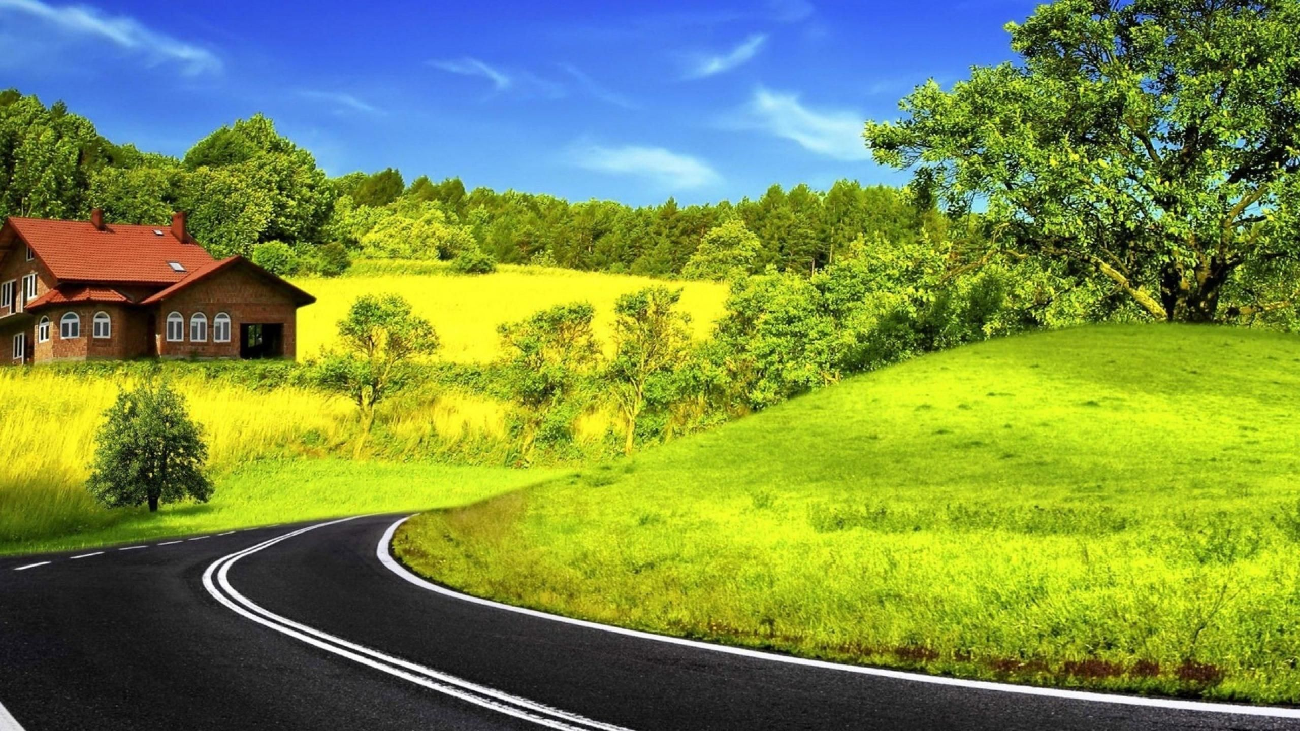 Nature Long Road Wallpaper