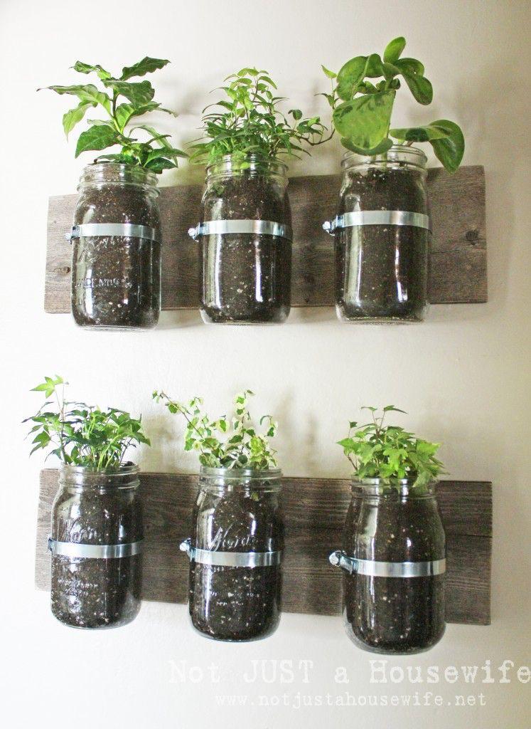 indoor planter hangers mason jar herb garden mason jar on indoor herb garden diy wall mason jars id=25409