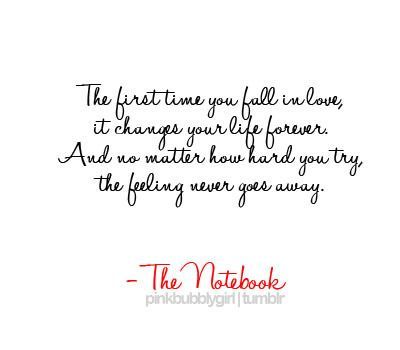 The Notebook Quotes Mesmerizing Notebook Quotes  Mheart95 The Notebook Quotes Followpicsco