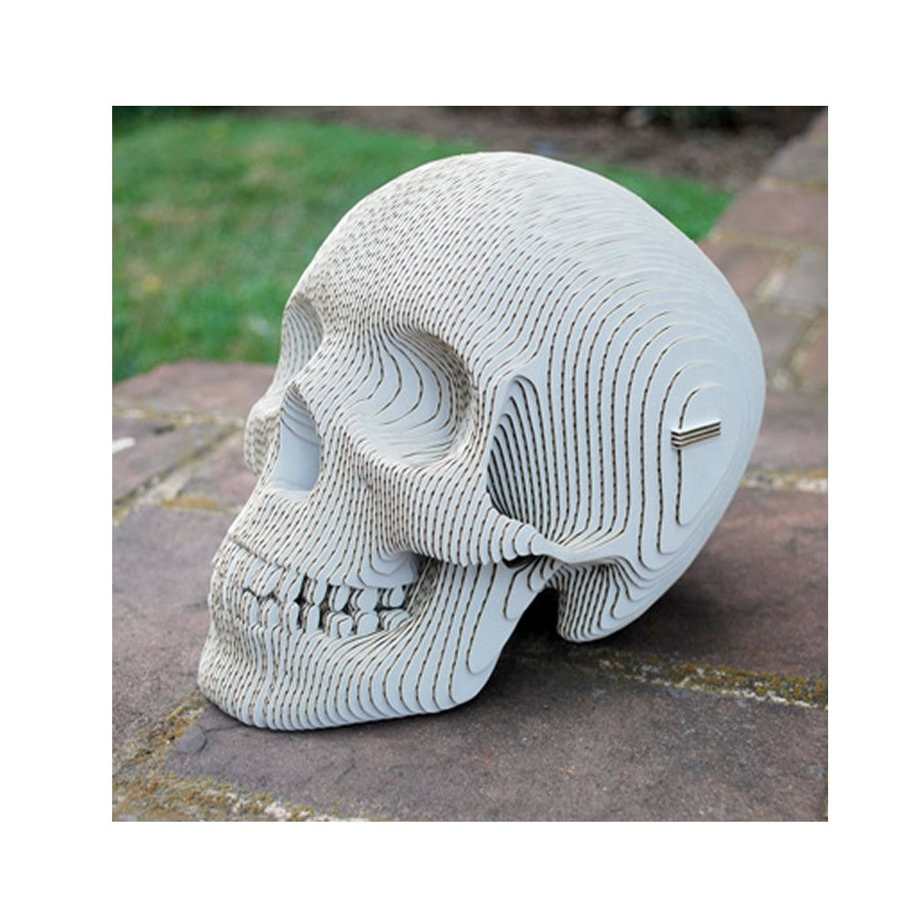Vince Human Skull Build Your Own From Laser Cut Cardboard Pieces