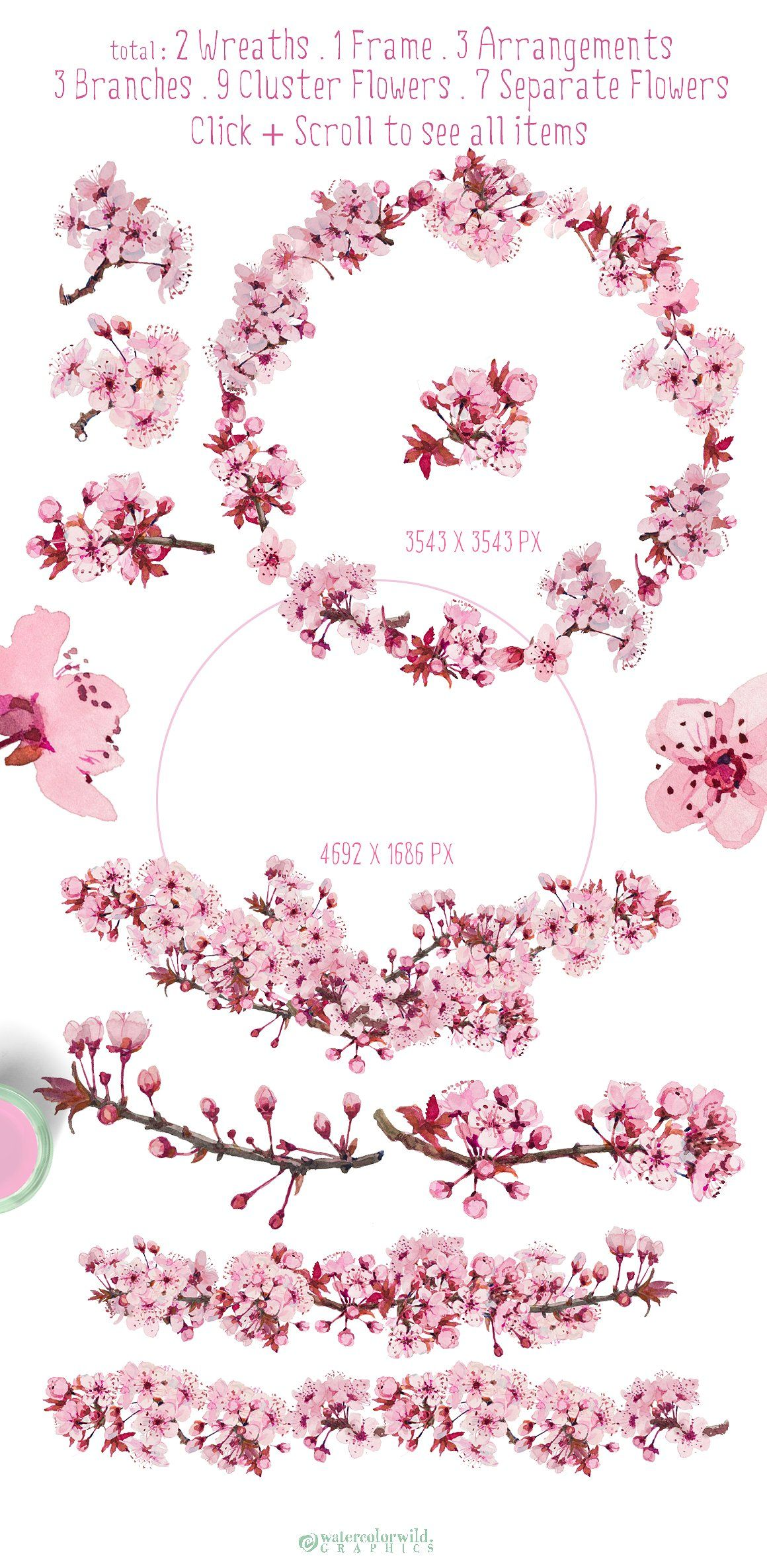 Prune Blossom Wedding Clipart Set Flower Clipart Graphics And