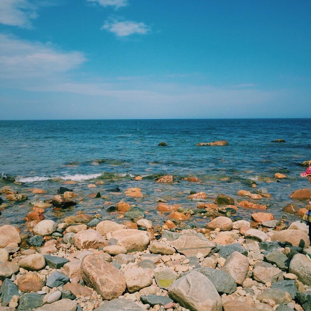 "18 Likes, 2 Comments - @kk_eli on Instagram: ""Home is in Long Island #summer"""