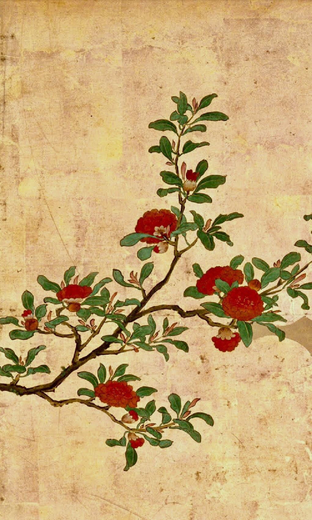 Detail Birds And Flowers Of Spring And Summer Edo Period Latter