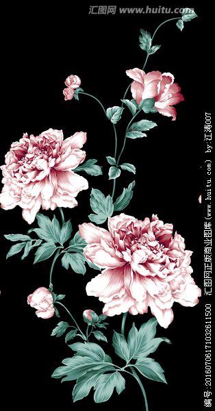 牡丹花 写实牡丹 提花牡丹 flower art floral watercolor flower painting