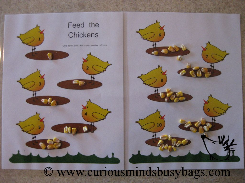 Busy Bag Learning Activity Feed The Chickens