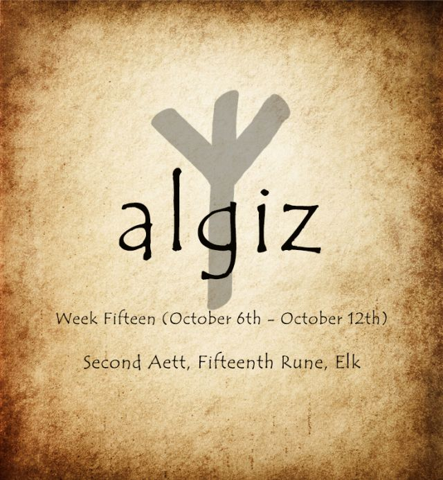 The Rune Algiz Means Elk And Is Associated With The Elk Sedge