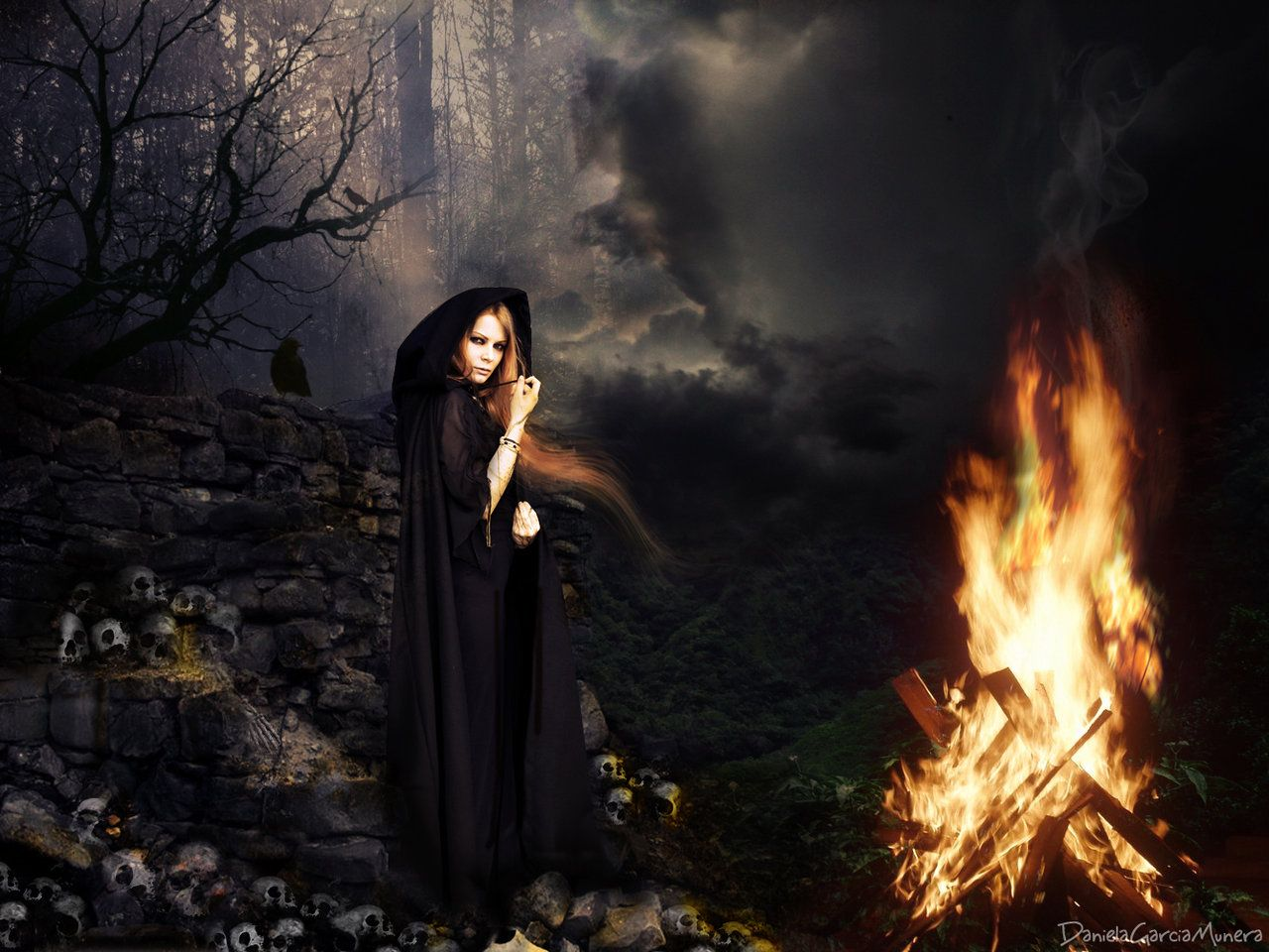 Witches Coven of Midnight   Magical pictures   Witch coven, Black