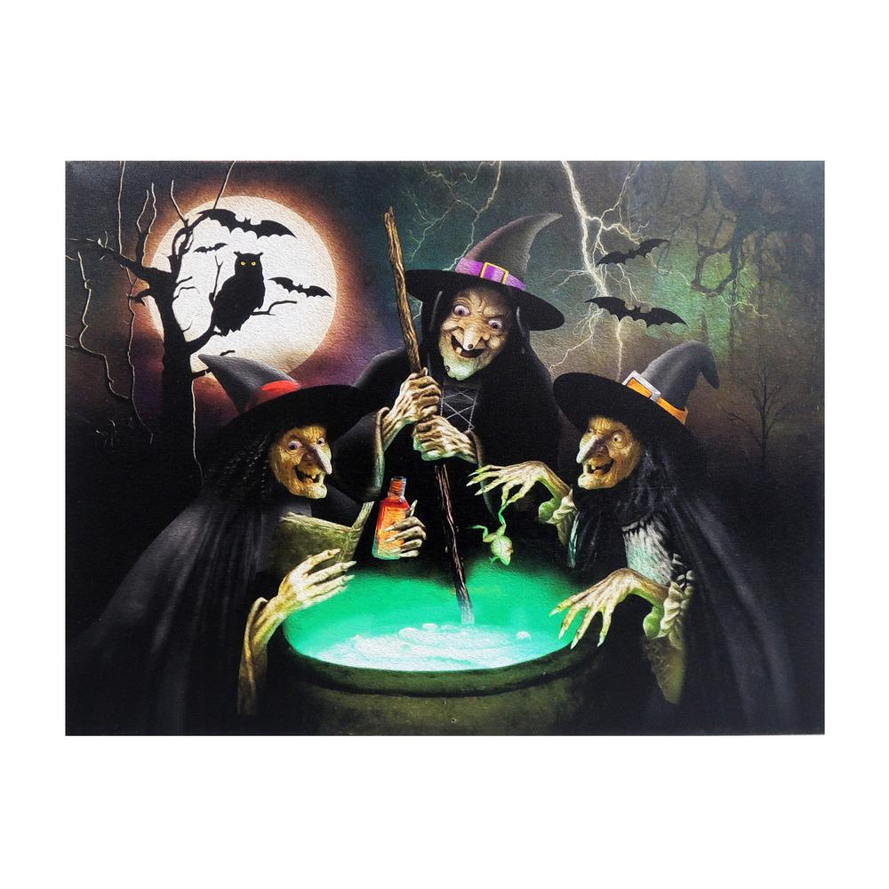 Home Accents Holiday 15 in. x 20 in. Halloween 3Witches