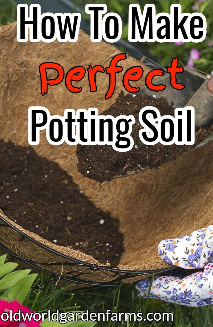 How To Create Perfect Potting Soil For Containers and Hanging ...