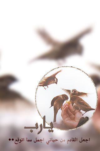خلفيات ايفون Http Jawalk Org Iphone Wallpaper Wallpaper Photo Frame