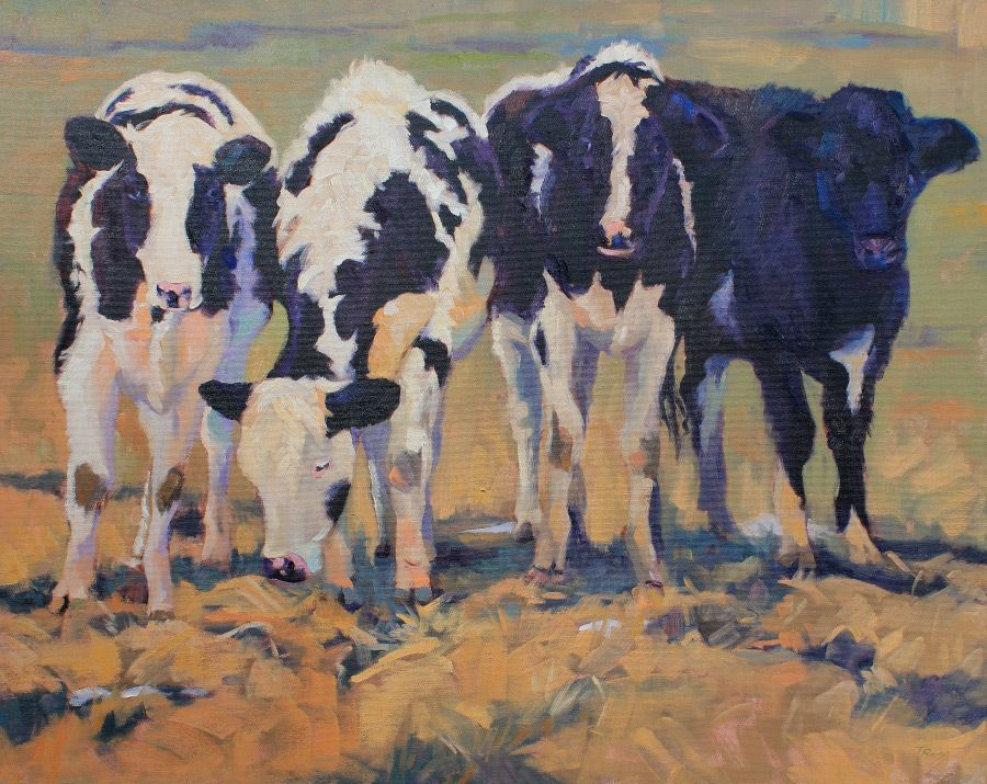 Cows by Tricia Bass