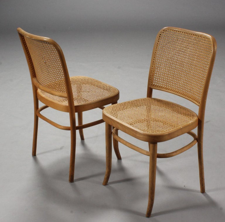 Set Of Six Bentwood Dining Chairs Josef Hoffmann Style For Sale At 1stdibs Dining Chairs Cane Dining Chairs Outdoor Dining Chairs