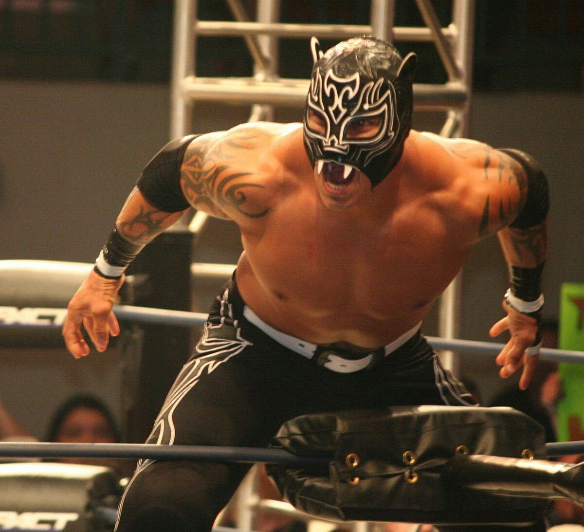 Lucha Libre Profesional X Treme Tiger Lucha Awesome In 2019 Lucha Libre Wwe Lucha Wwe