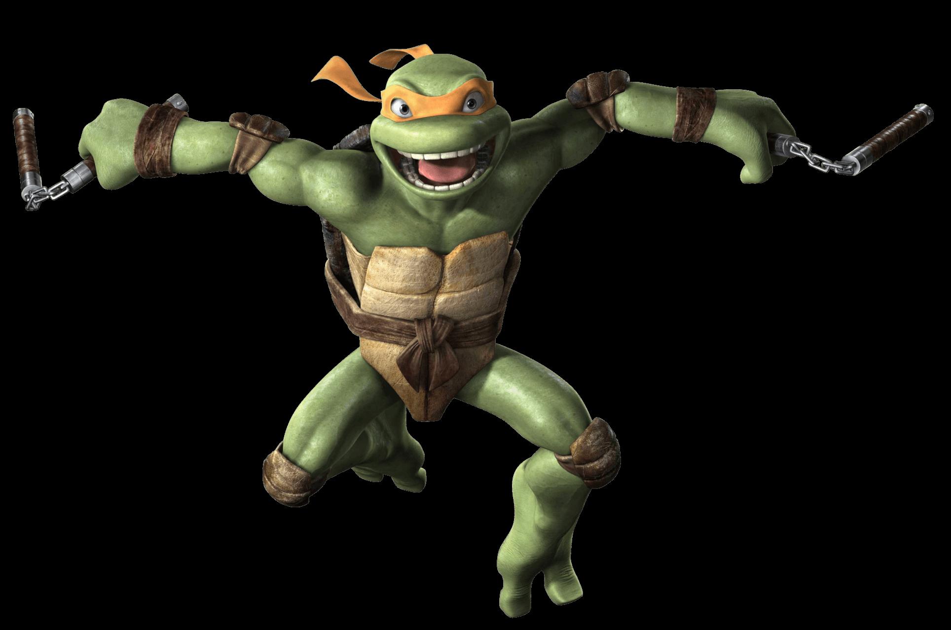 Ninja Turtle Png Image Tartarugas Ninjas Ninja Tartaruga
