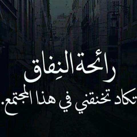 النفاق Arabic Calligraphy Words Facts