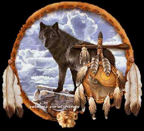 native american black wolves | Native American Tags
